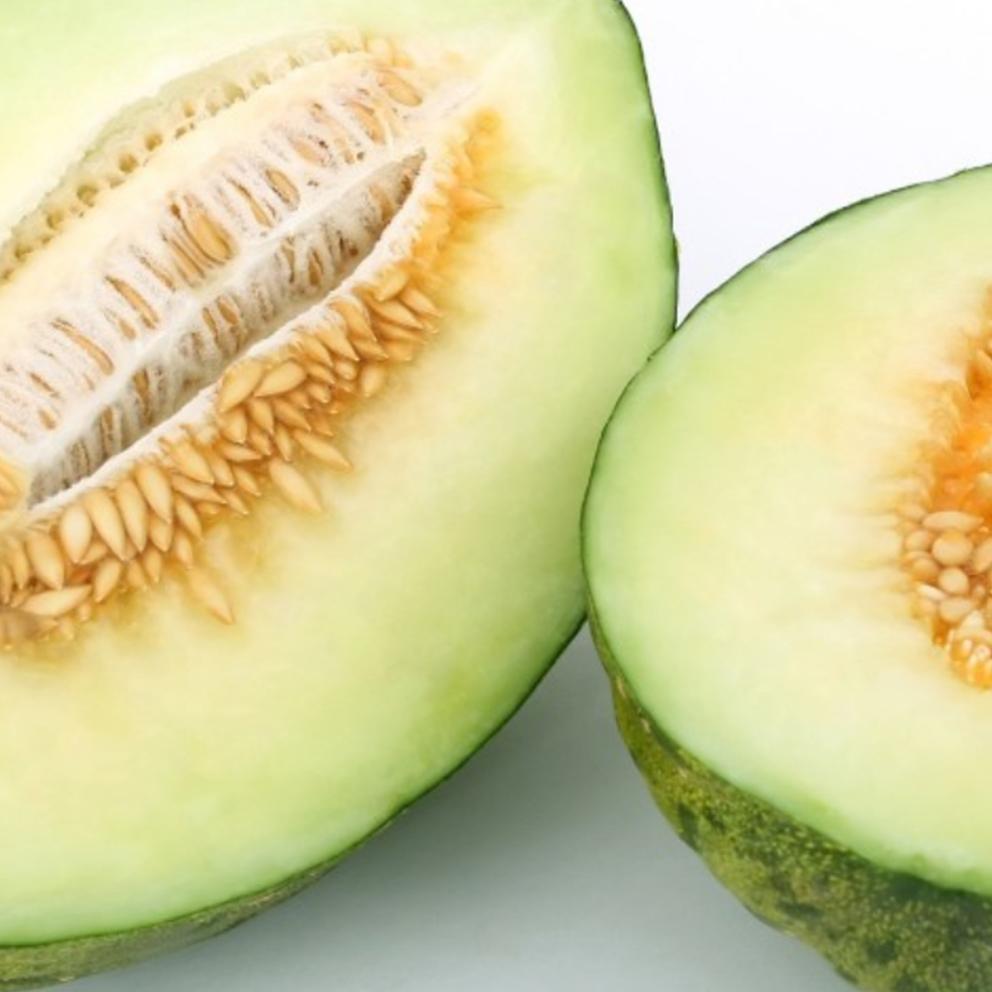 84-Melon